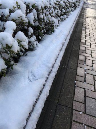 思いがけない雪道になりました